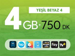Satın Al Yeşil Beyaz 4GB