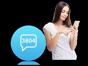 3804 İnteraktif Oylama Servisi